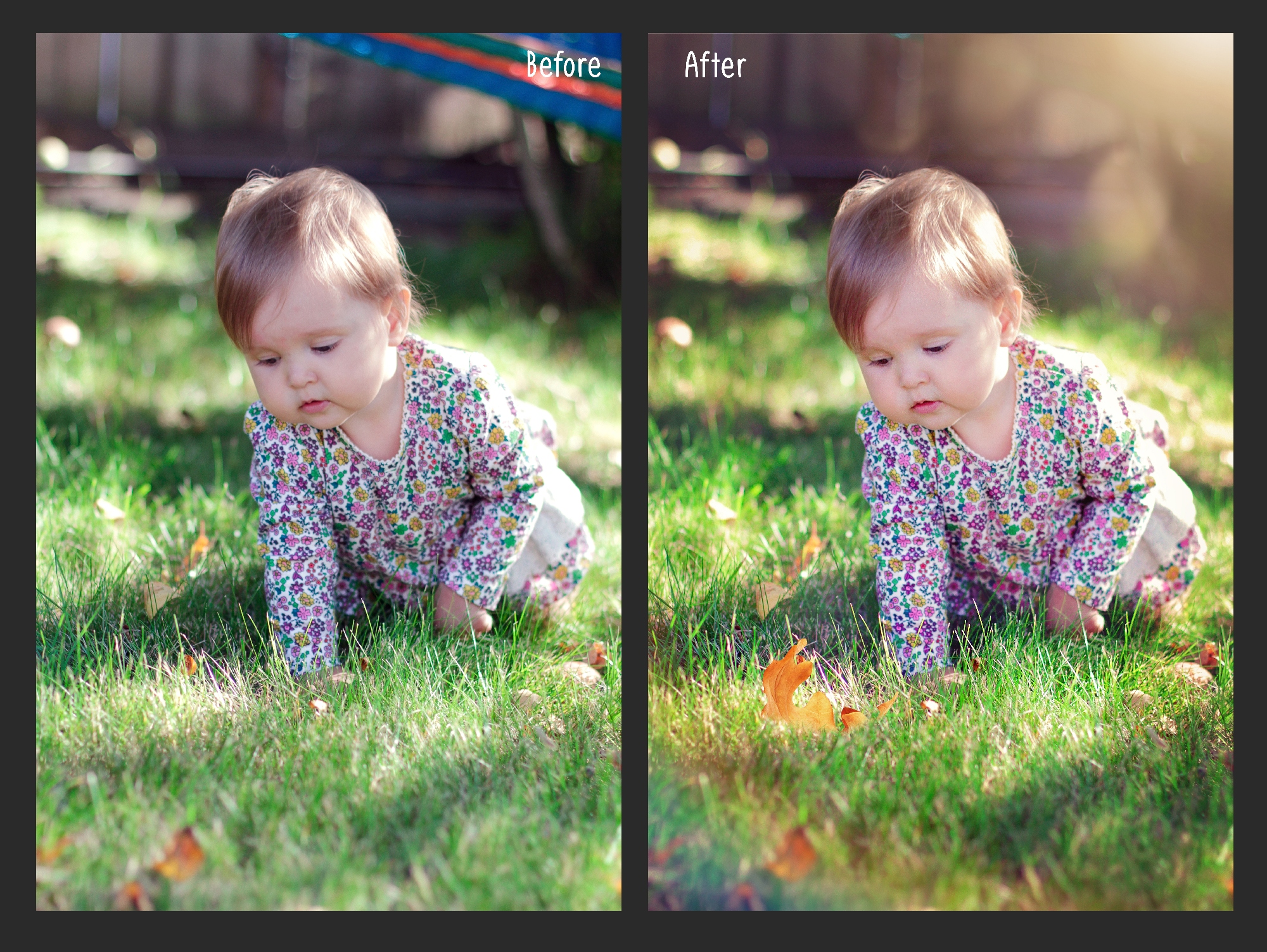 Natural Sunlight photo overlays example image 3