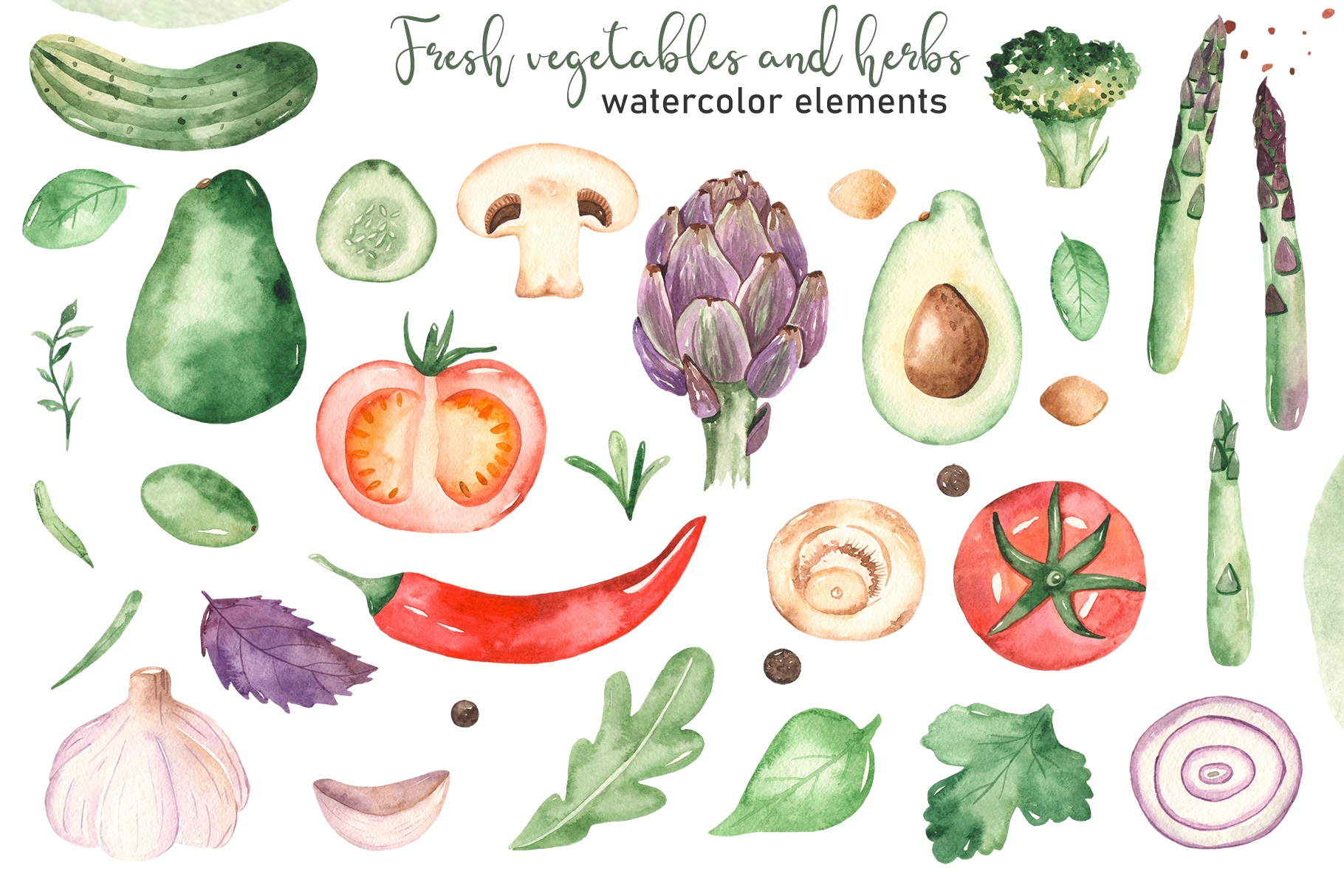 Vegetables and herbs Watercolor collection Clipart example image 9