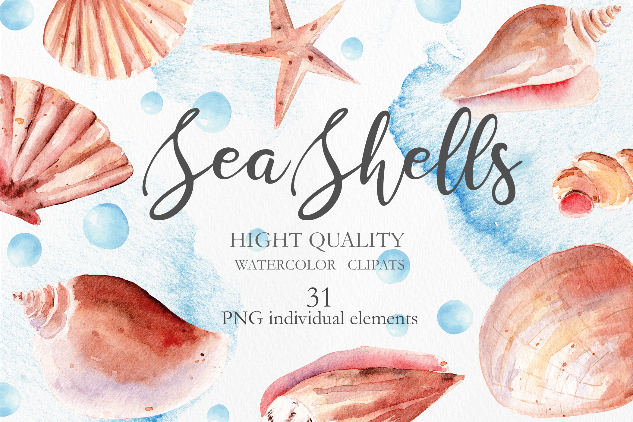 Seashells Clipart Collection example image 1