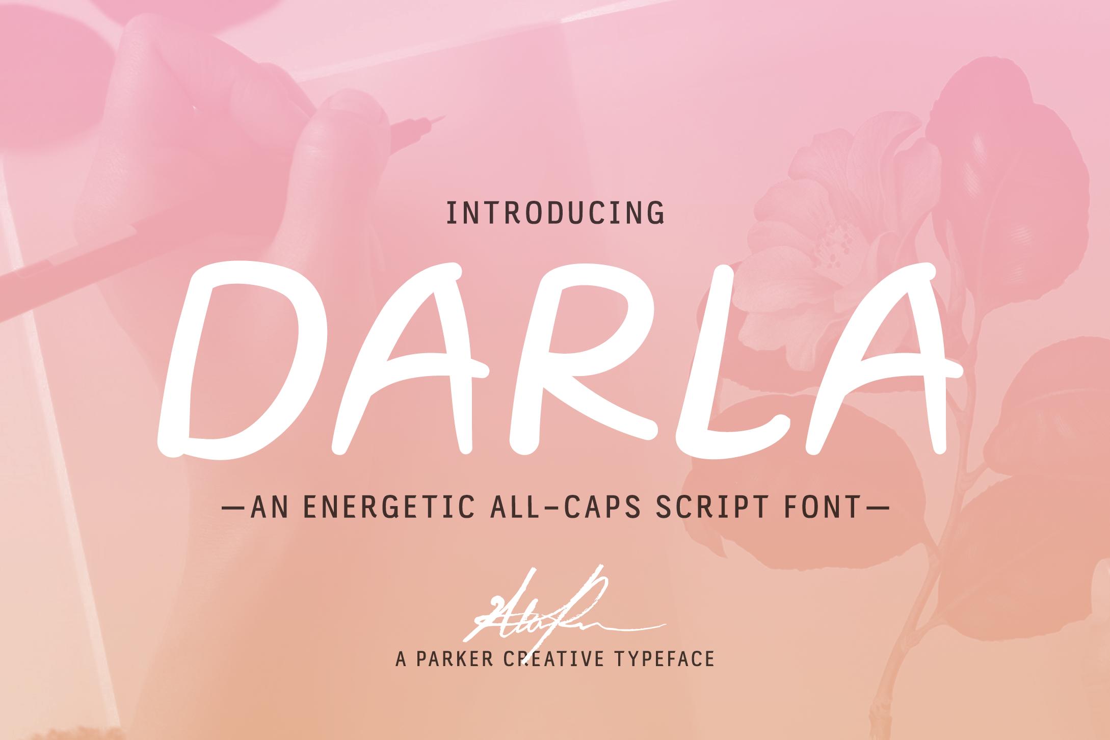 Darla Script Handwritten Font example image 1