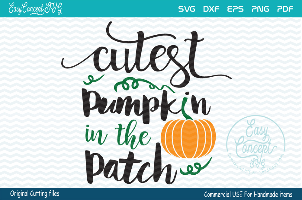 Cutest Pumpkin In The Patch example image 1