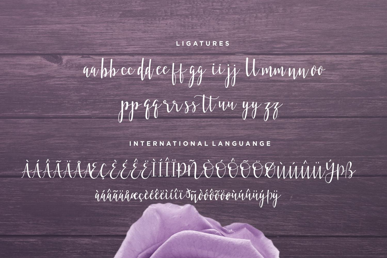 Bellattrix - A Modern Script Font example image 12