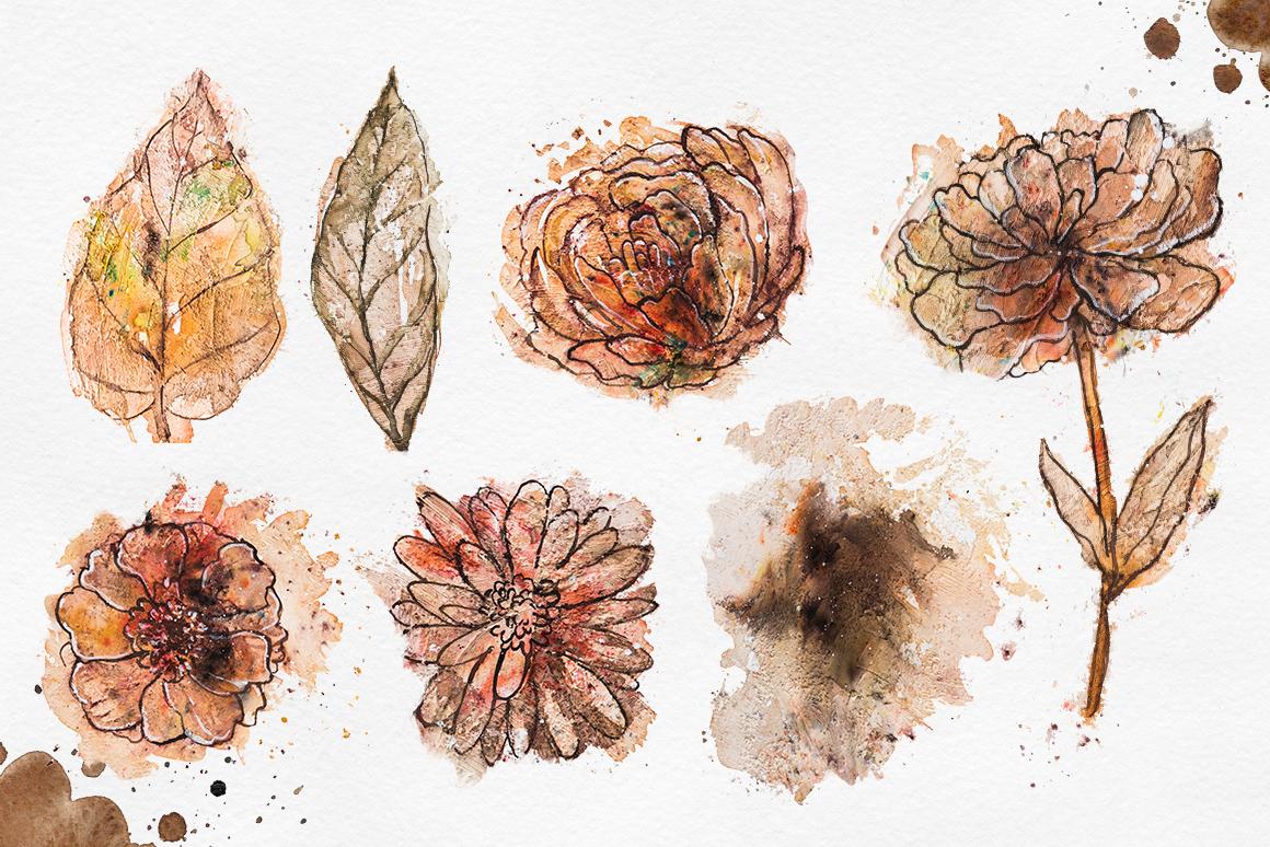 Herbarium Master Collection example image 6