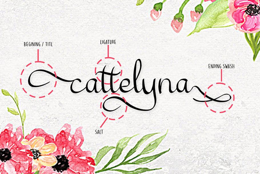 cattelyne example image 2
