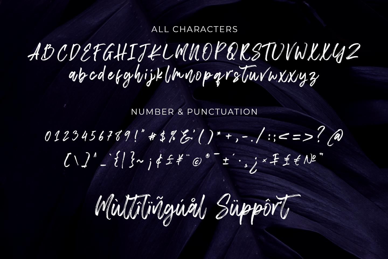 Chelistine - Beauty Handwritten - example image 11