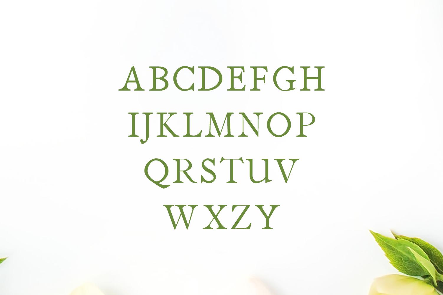 Jerricca Serif Typeface example image 2