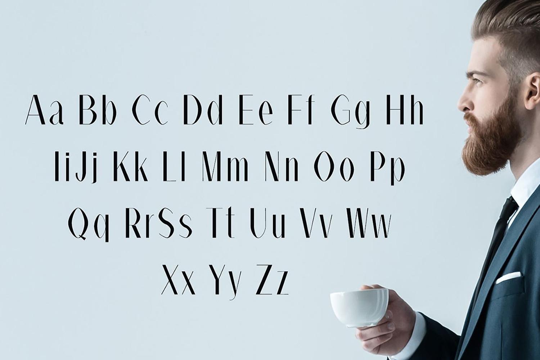 Alex Sans Serif Typeface example image 6