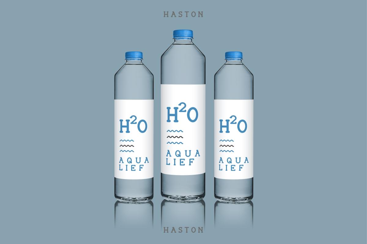 HASTON example image 10