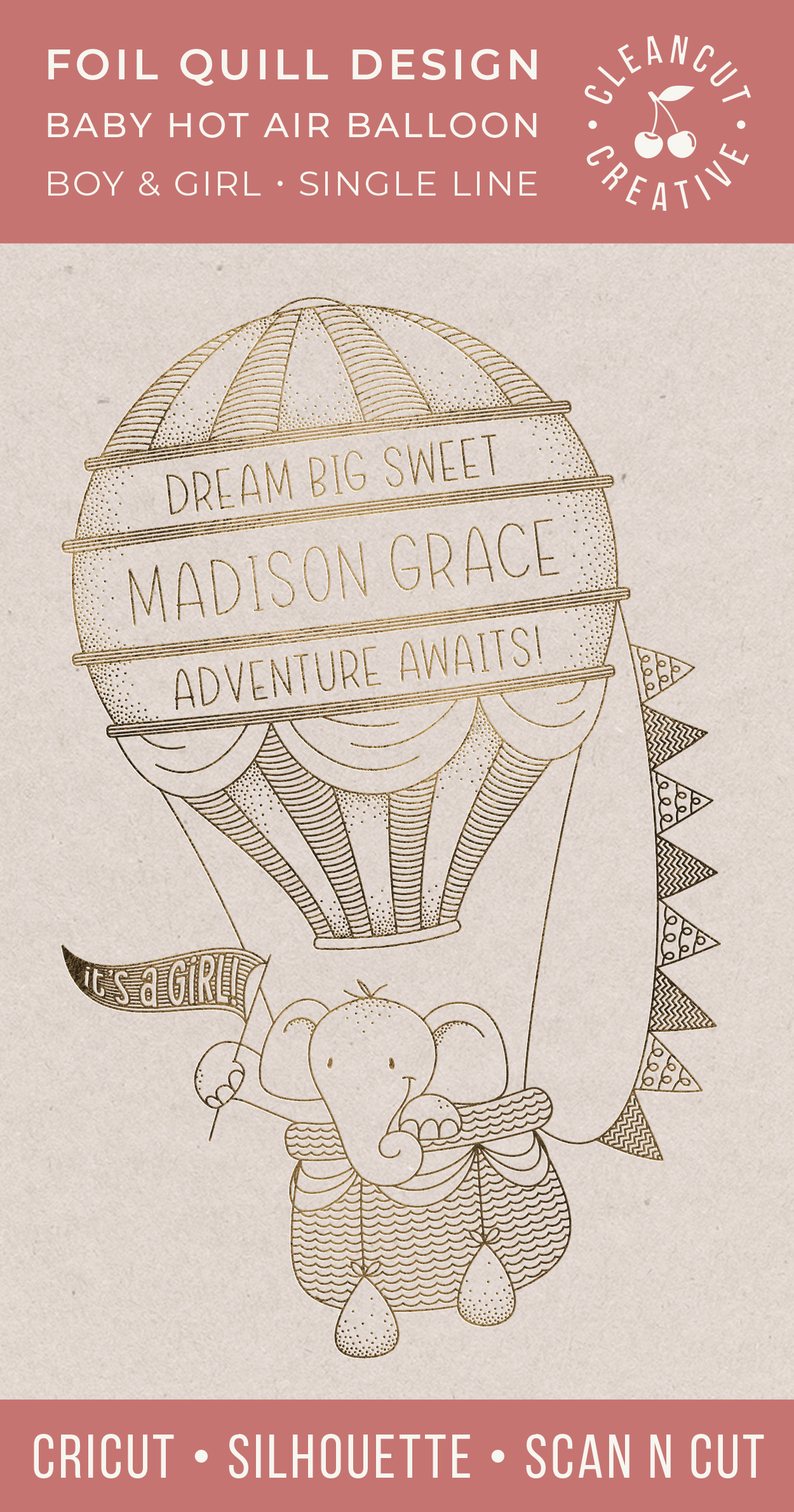 Foil Quill HOT AIR BALLOON Birth Stats Baby Announcement SVG example image 5