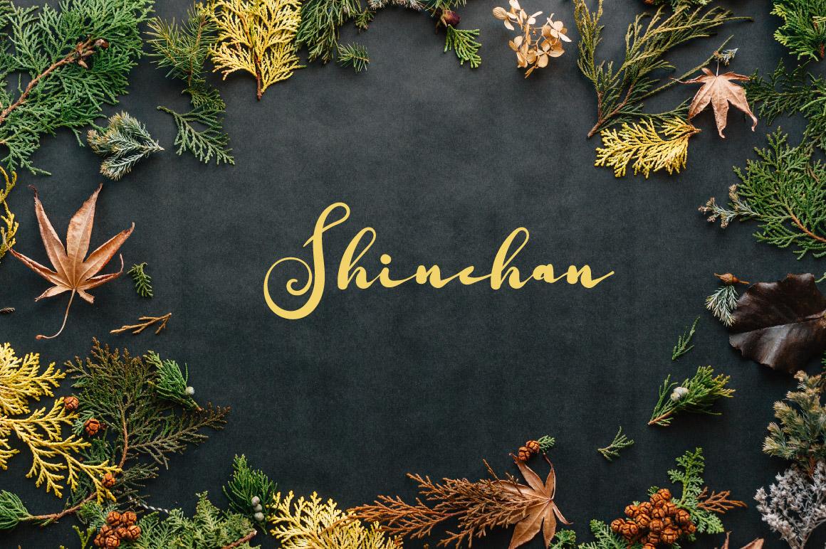 Shuntip Jan Script Font example image 2