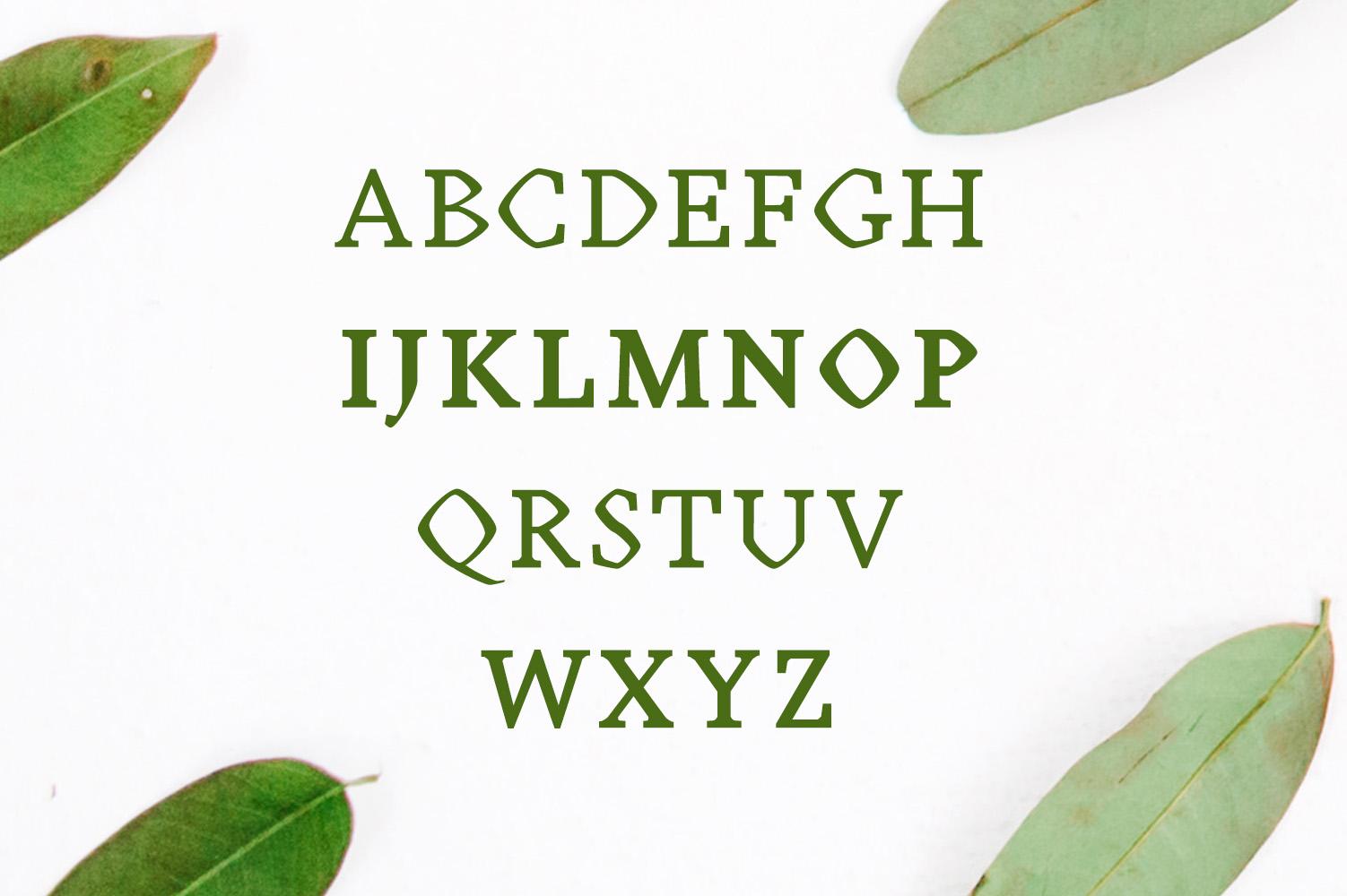 Achazia Serif Typeface example image 2