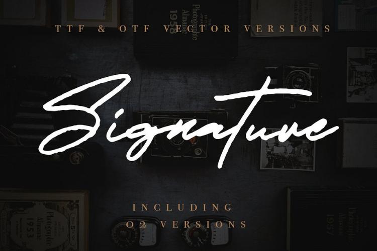JV Signature SVG - Opentype SVG FONT example image 8