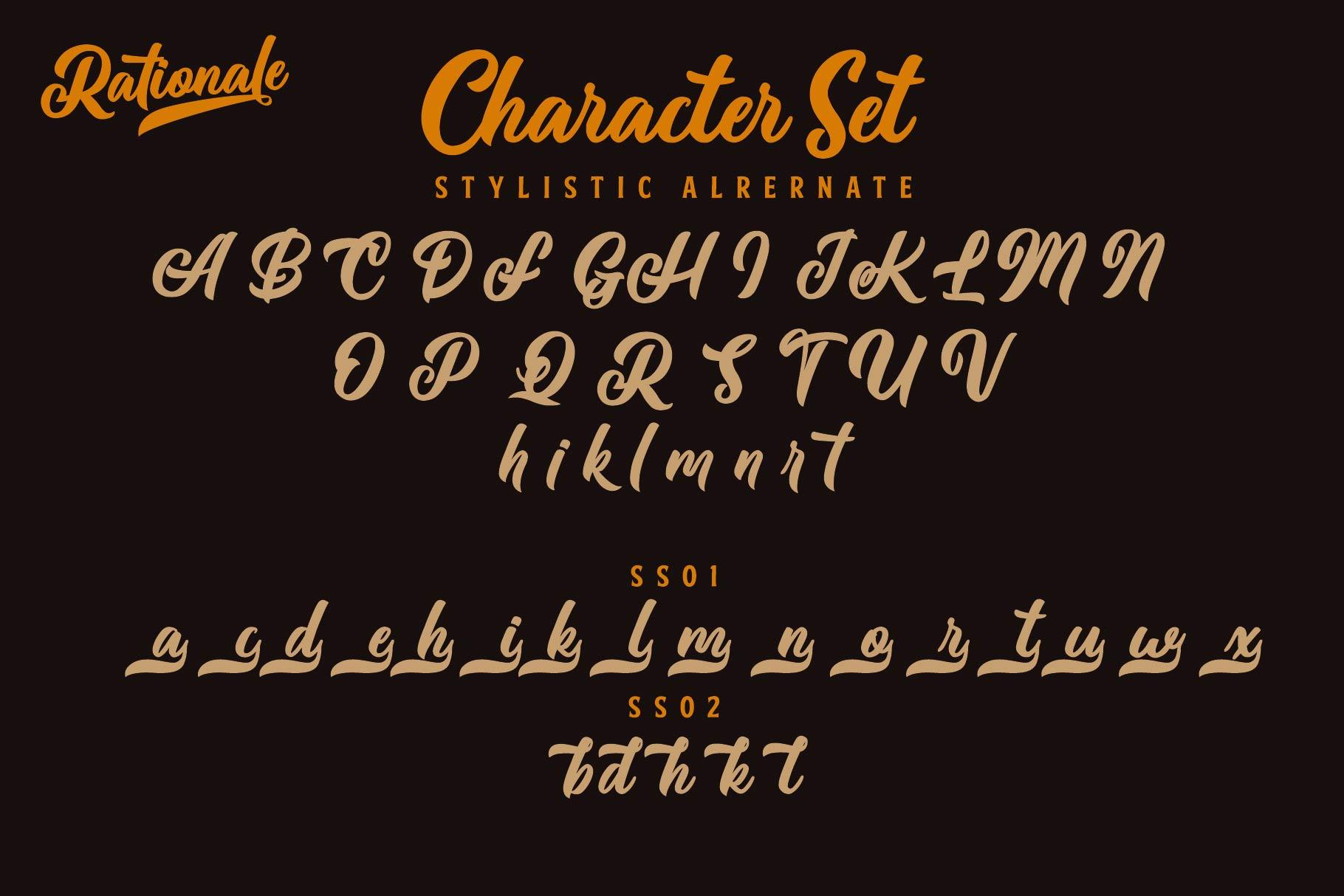 Rationale Vintage Script Font example image 7