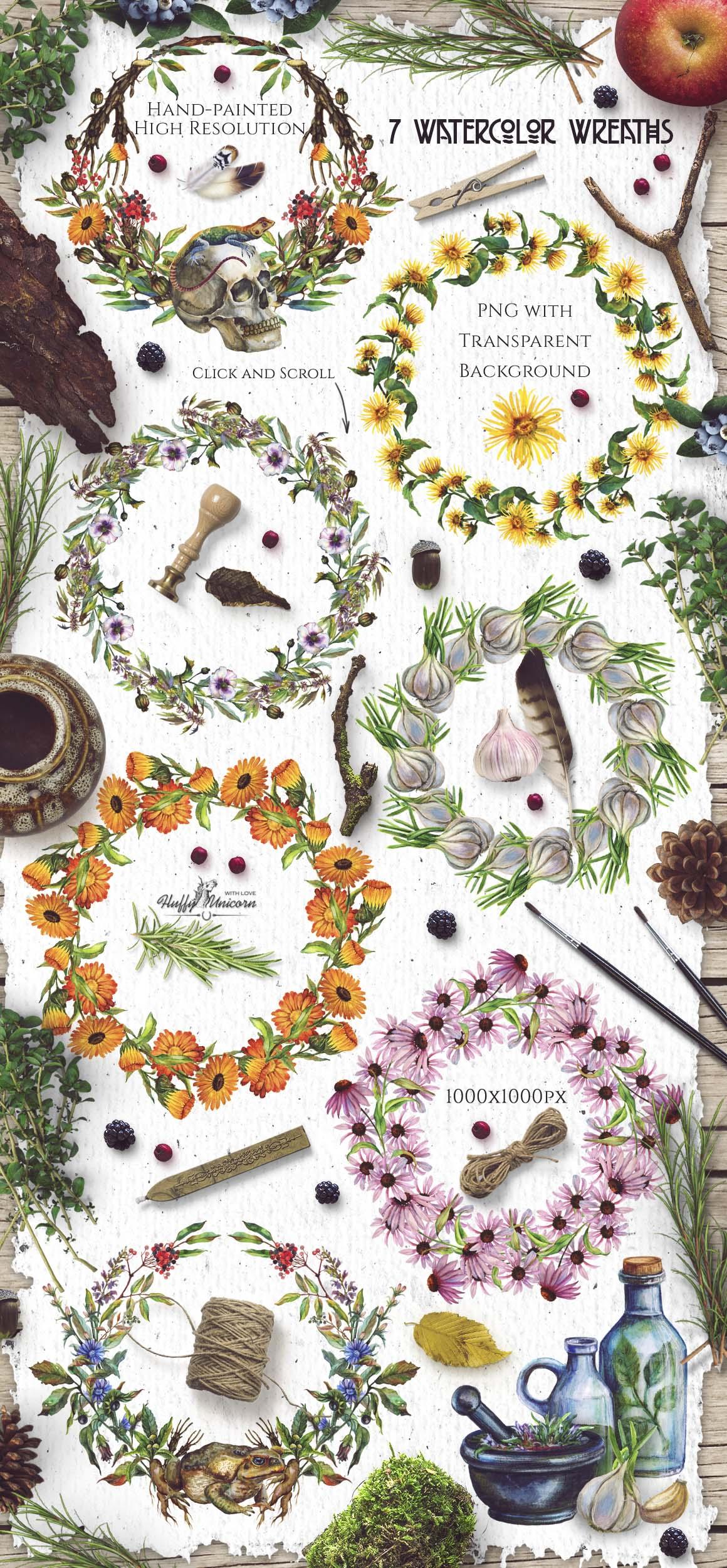 Watercolor Alchemy Medicinal Herbs example image 5