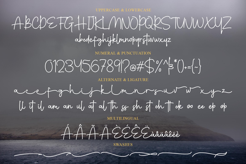 Wynstelle Script example image 9