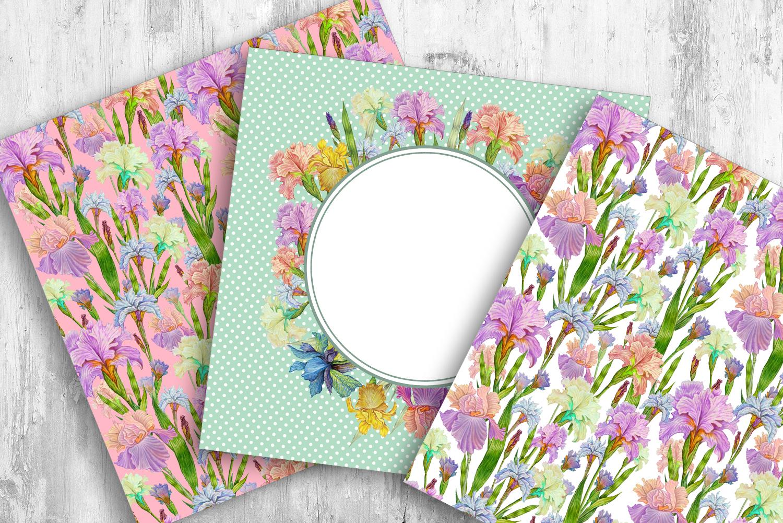 Iris digital paper. seamless pattern.Floral digital paper. example image 4