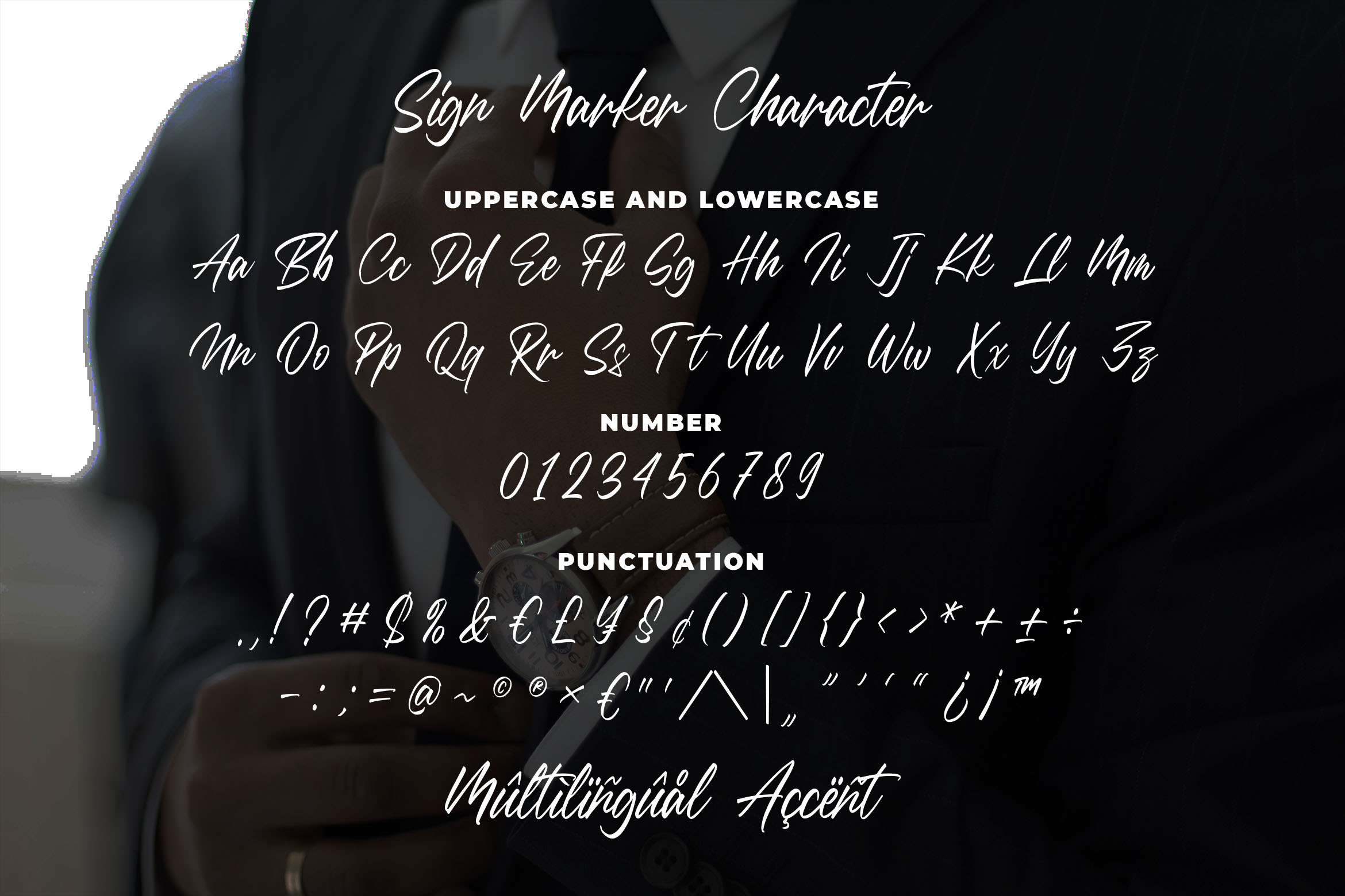 Sign Marker - Classy Signature Font example image 6