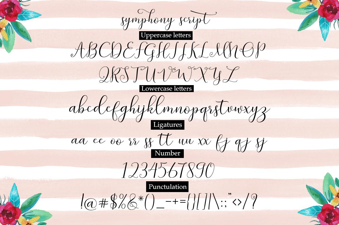 Symphony Script example image 8
