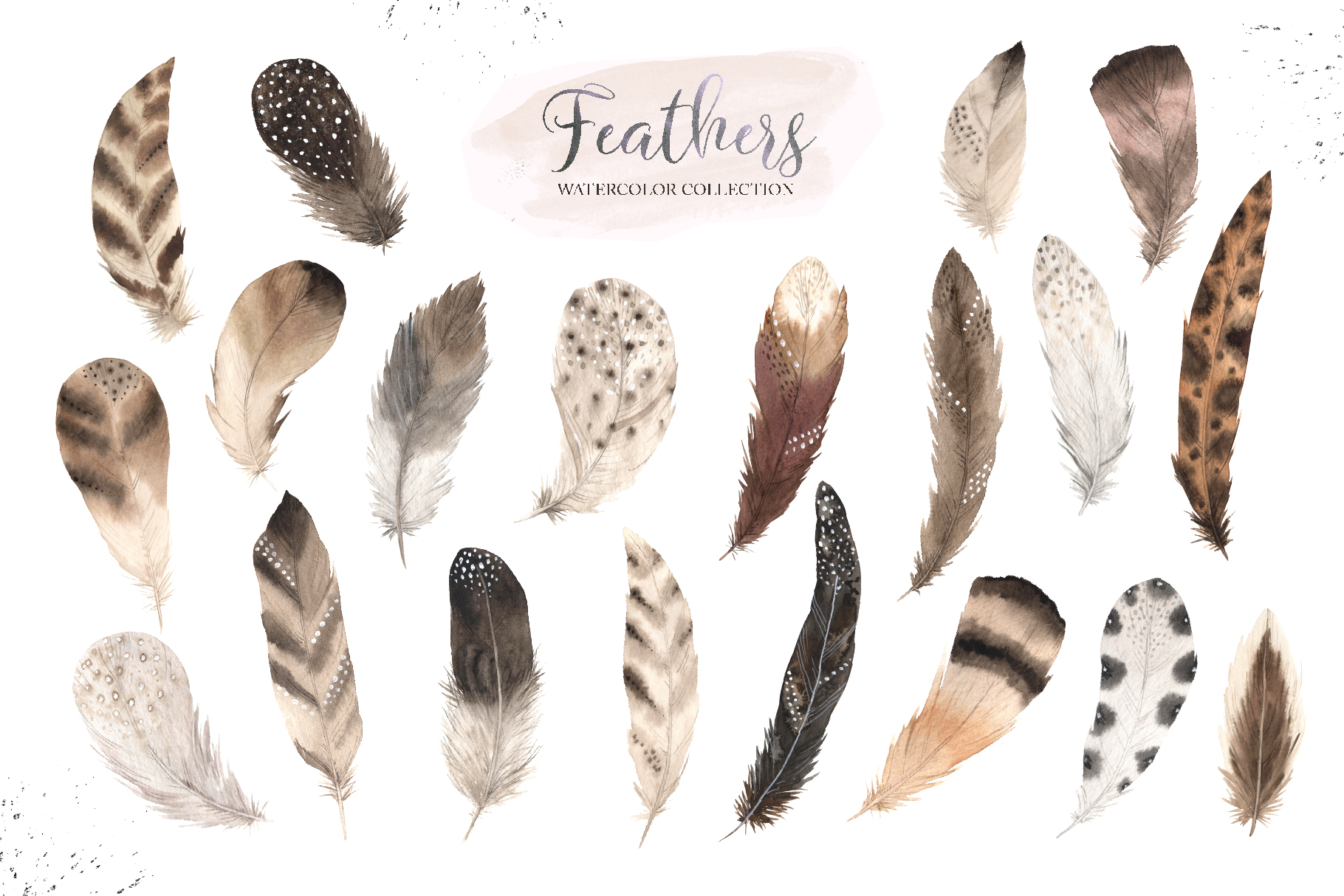 Watercolor Delicate Feathers Set example image 2