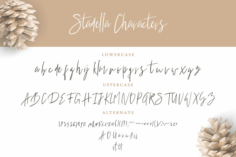 Stadella Signature Script example image 7