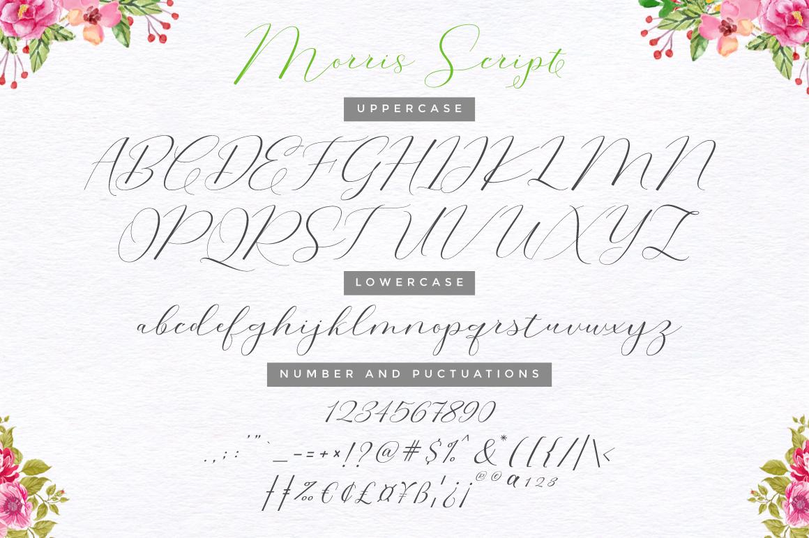 Morris Script | Font Duo example image 10