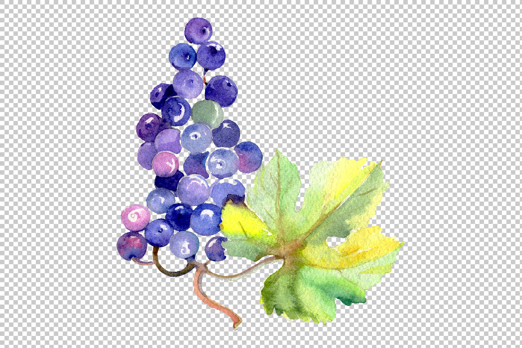 Grapes Watercolor png example image 8