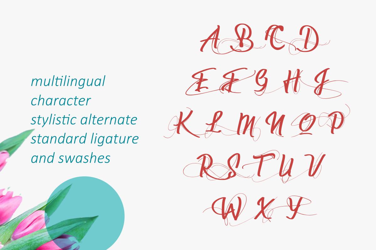Deliverance | Modern Script Font example image 10
