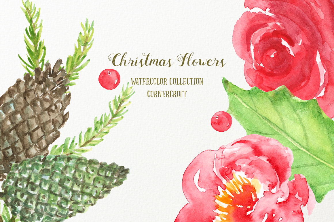 Watercolor Clipart Christmas Flowers example image 4