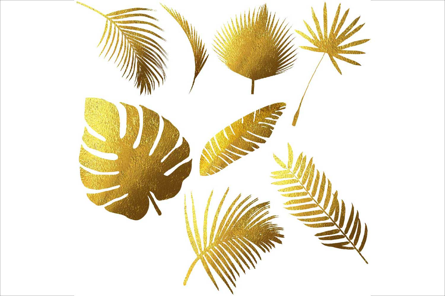 Tropical Leaves Silhouettes Clipart example image 4