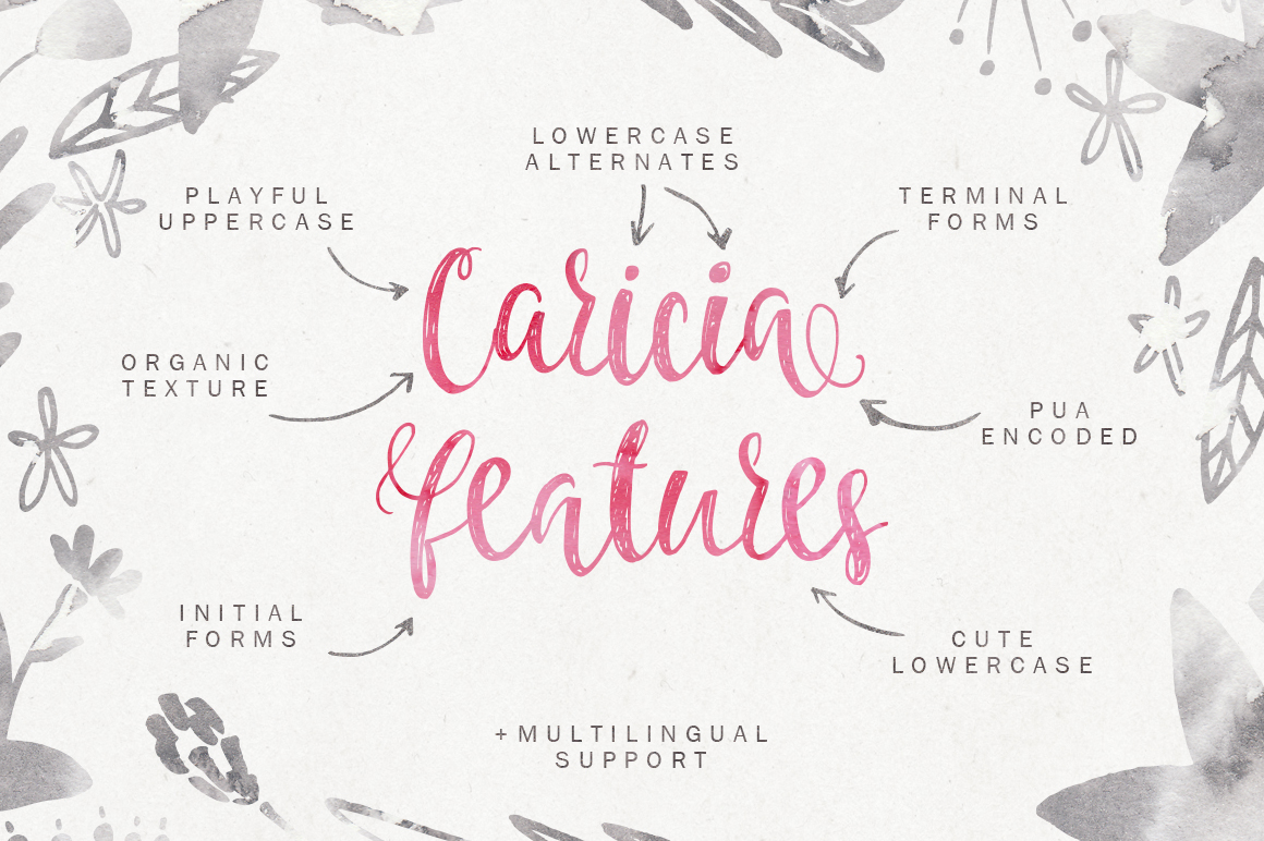 Caricia - handdrawn font example image 3