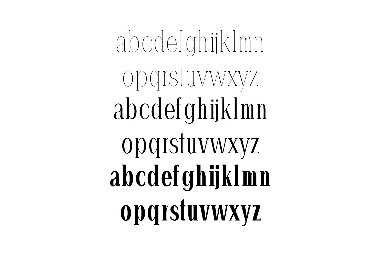 Hommer Minimal Serif Typeface example image 3