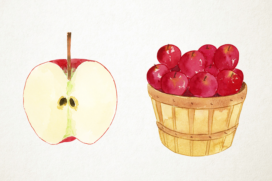 Watercolor Apples Clipart, Apples Clip Art, Fall Clipart example image 4