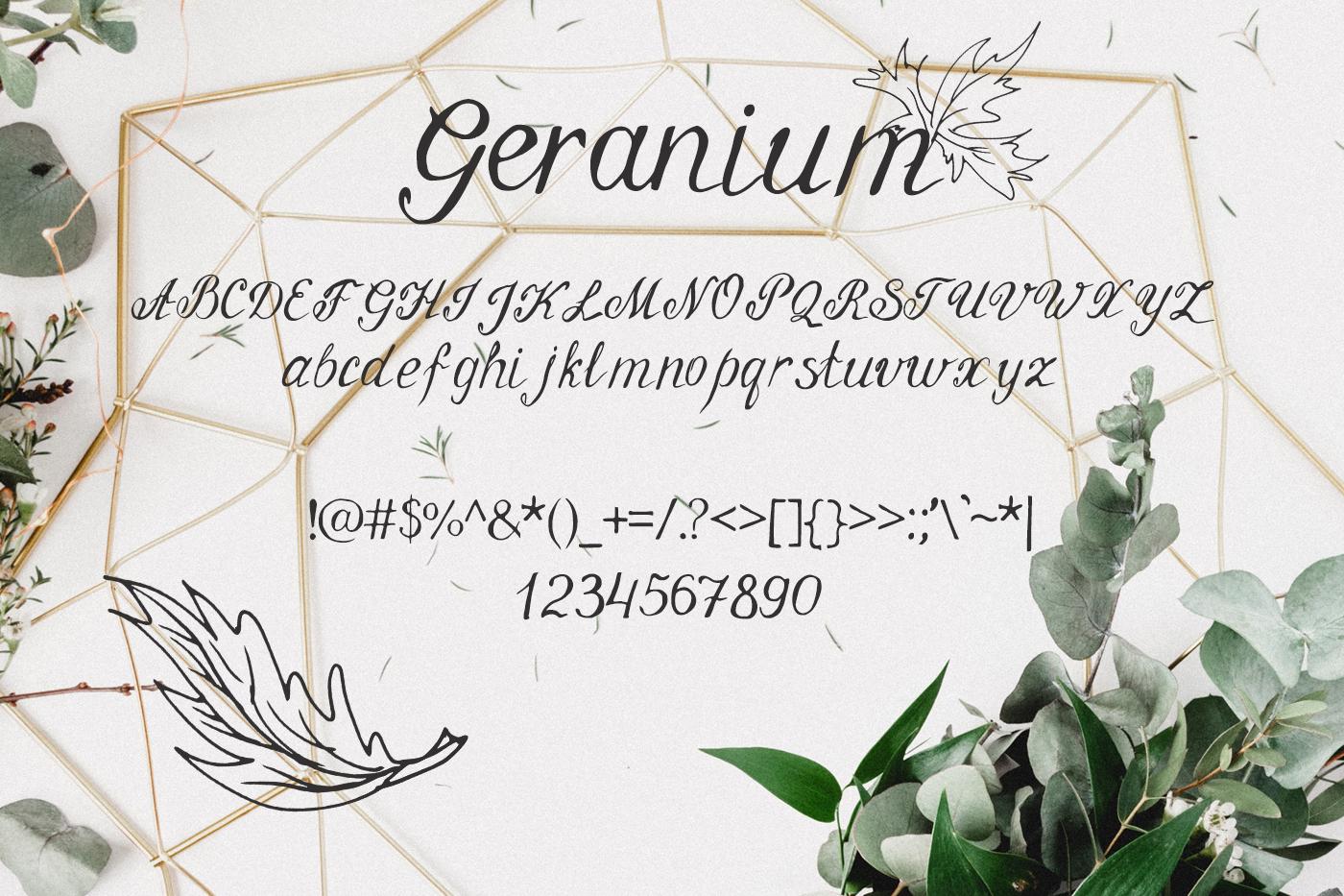 Geranium Font example image 2
