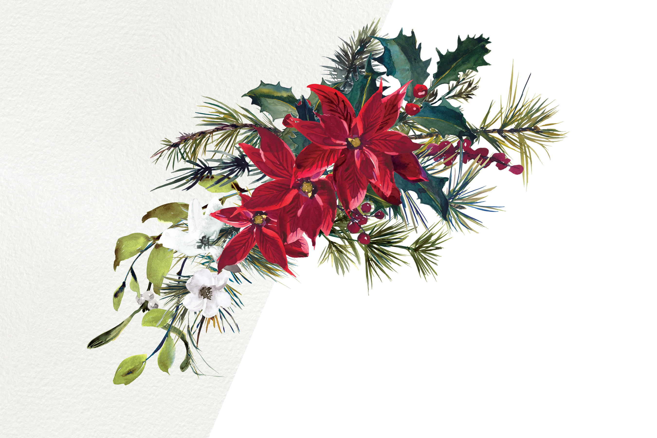 Watercolor Poinsettia Christmas Clipart example image 7