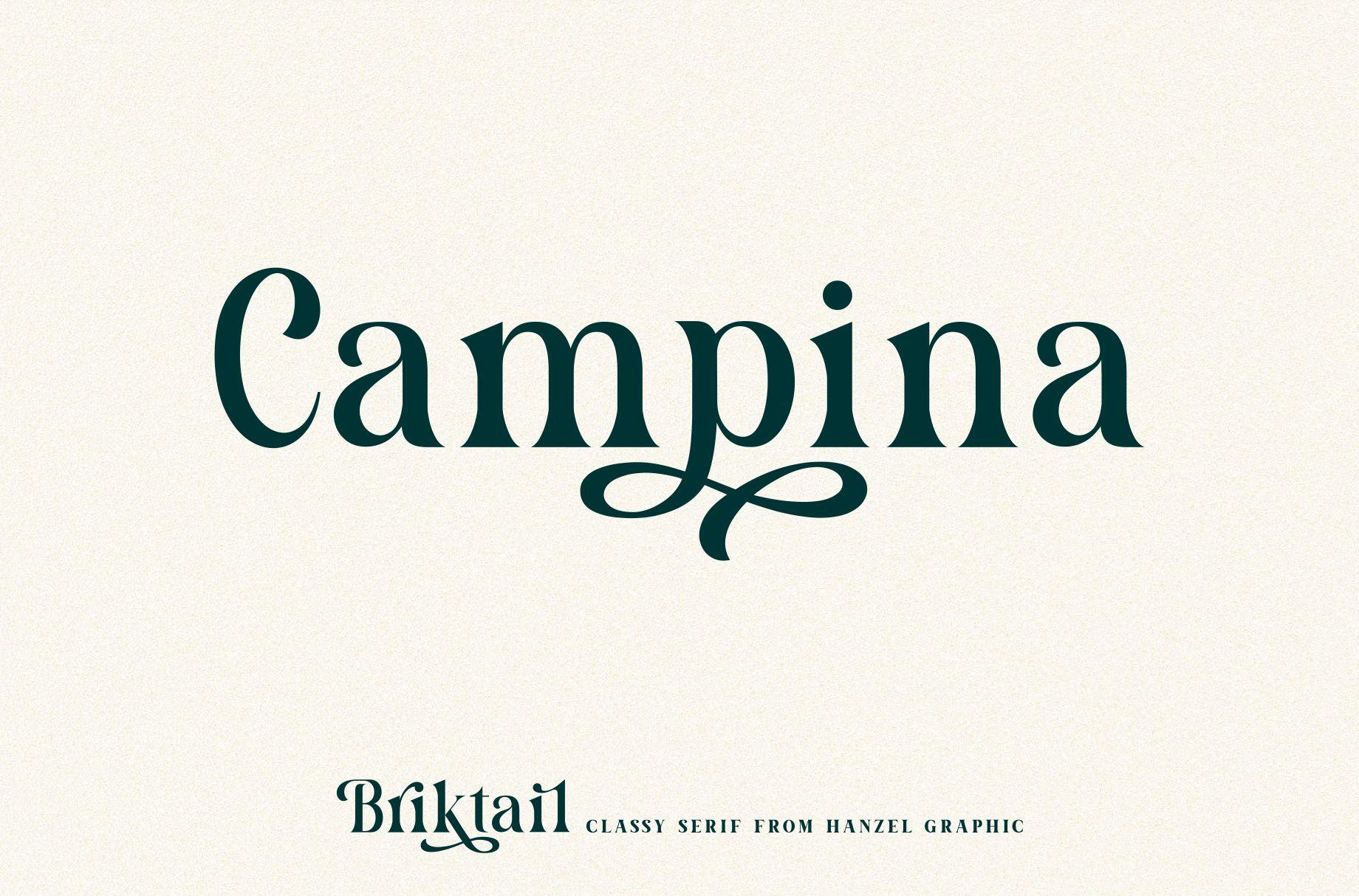 Briktail//Modern Serif Font example image 5