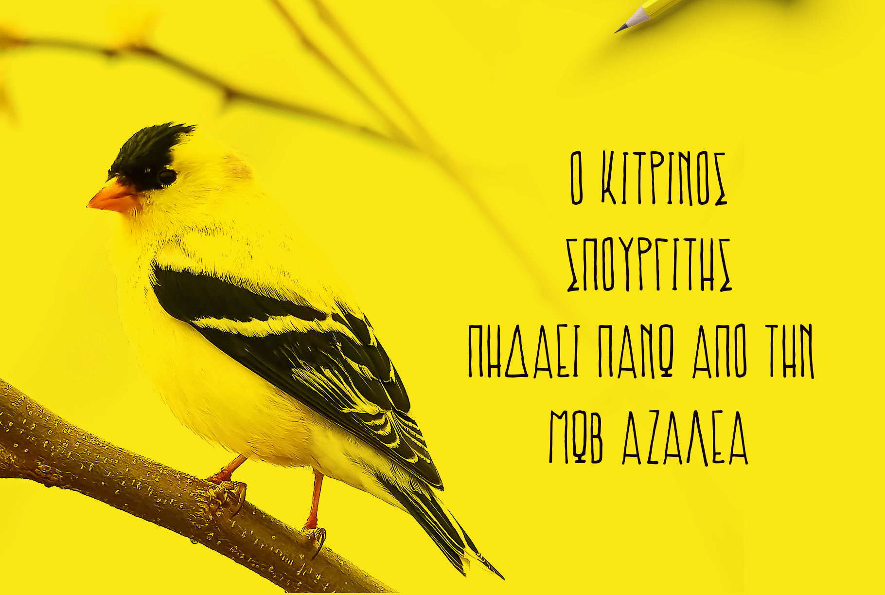Prokopis font example image 6