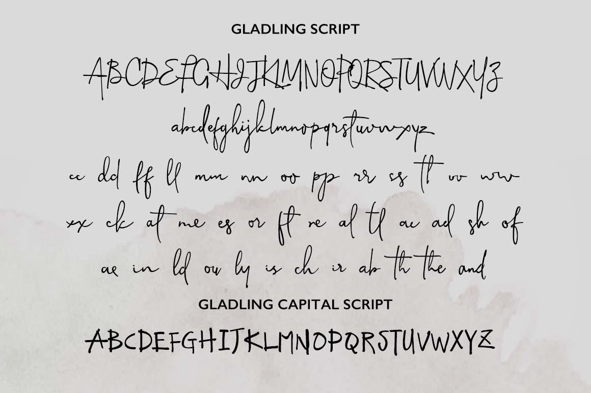 Gladline Script Font example image 6