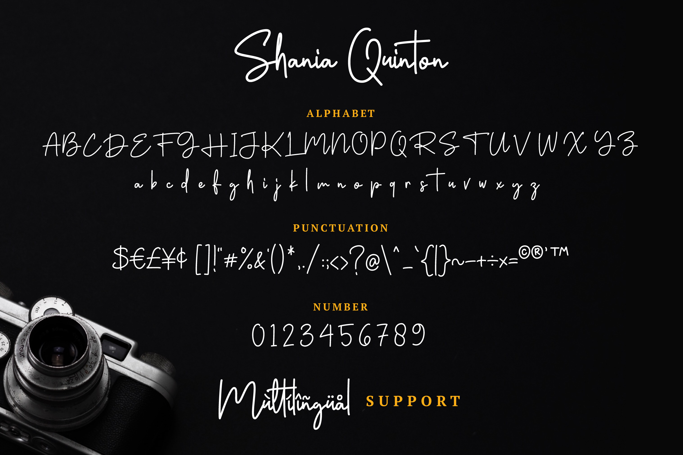 Shania Quinton Font example image 7