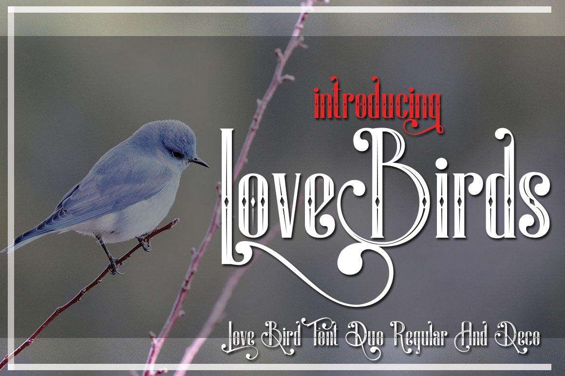 LoveBirds example image 2