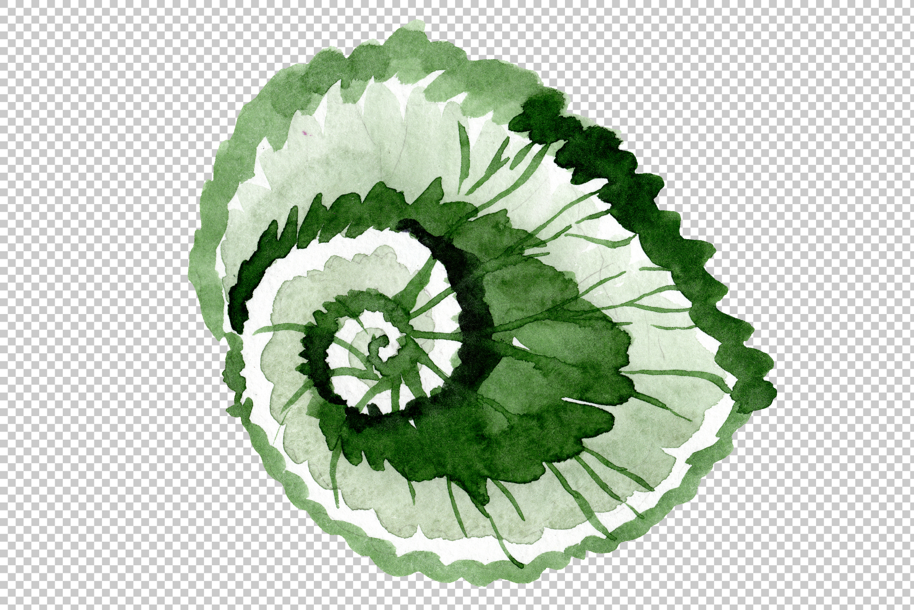 Begonia leaves Watercolor png example image 7