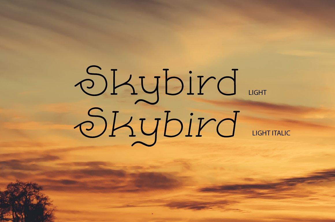 Skybird Family - Crazy, unique & retro example image 8