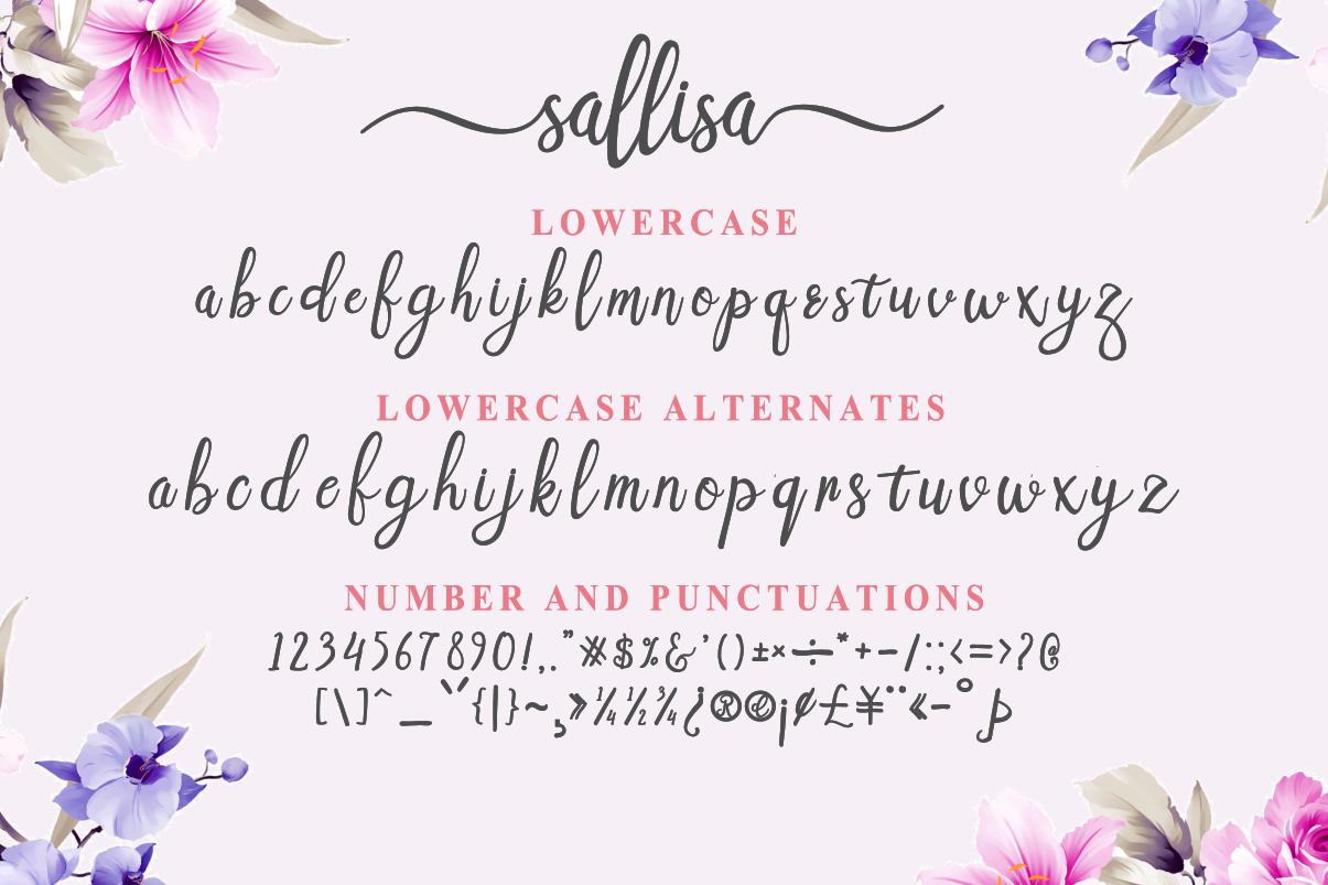 Sallisa - beautiful script font example image 3