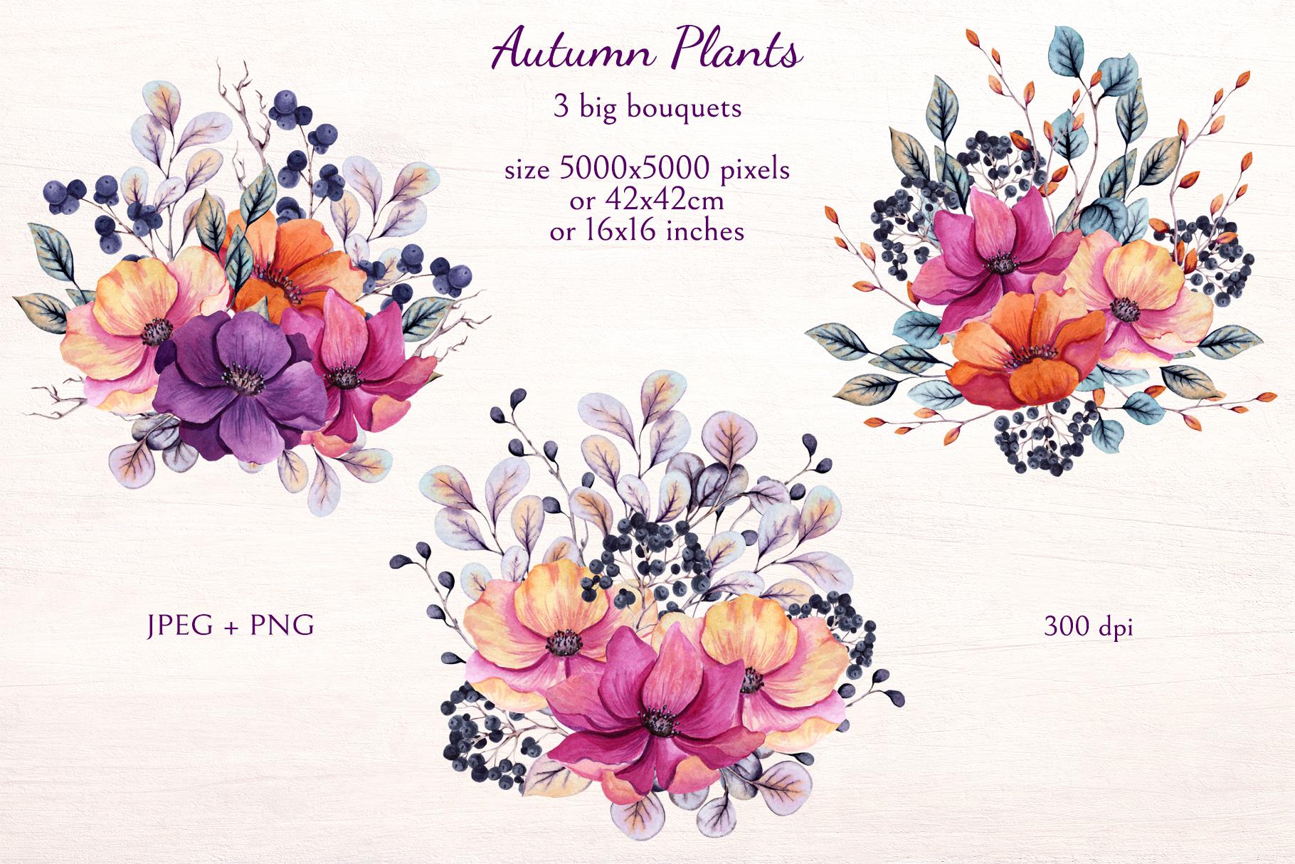 Autumn Plants example image 3