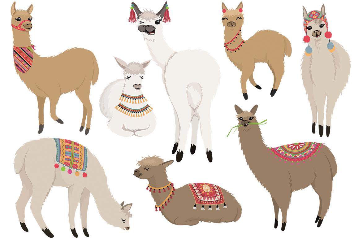 No Drama Llamas Graphics Set example image 2