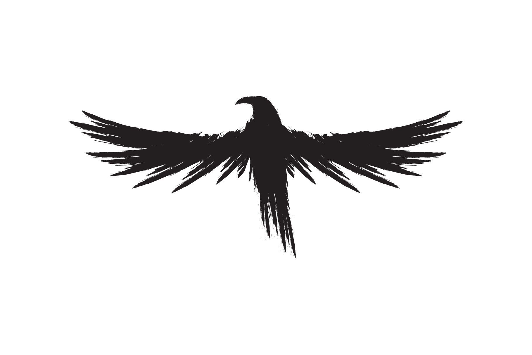 Black raven crow body and wings. example image 7