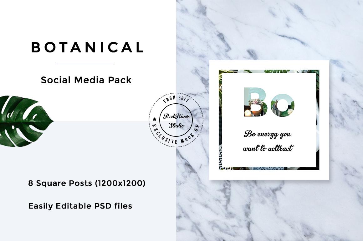 Botanical Social Media Pack example image 7