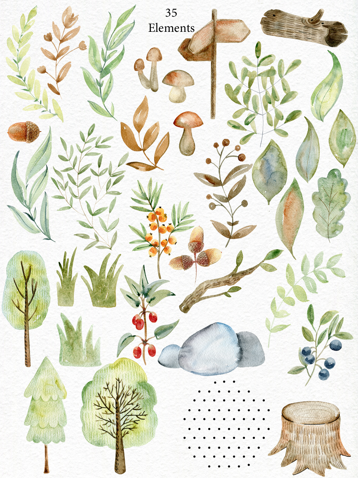 Woodland. Watercolor set. example image 3