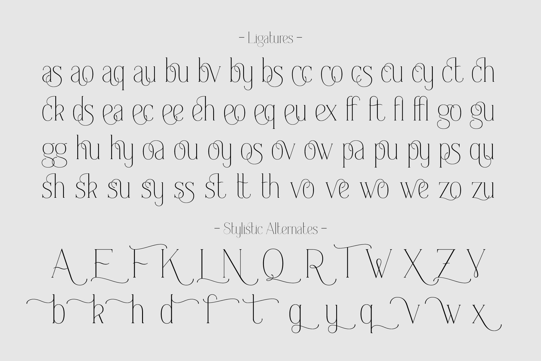 Everleigh Serif font example image 7
