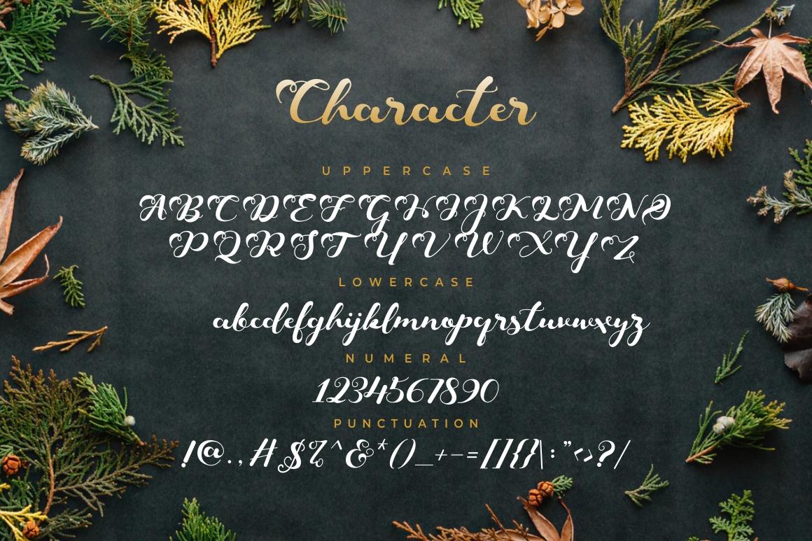 Keshia Script Font example image 6