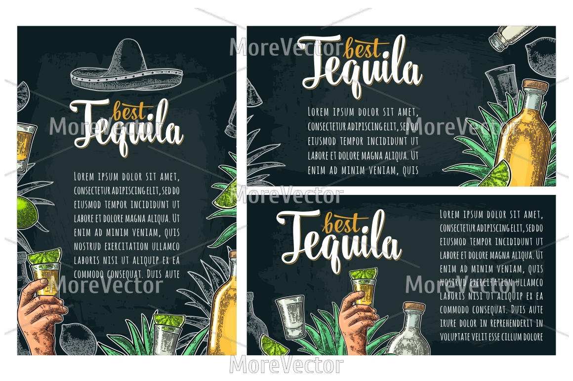 Illustration, pattern and posters Tequila with engraving.  example image 12